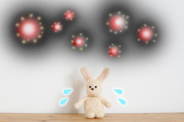 エアコンクリーニング,カビ,花粉,雑菌,ホコリ