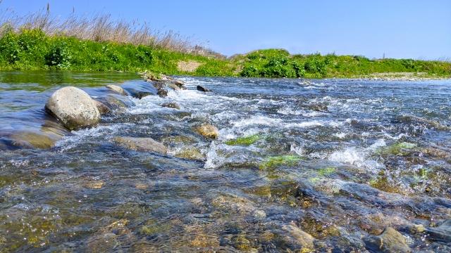 河川保護,石けん