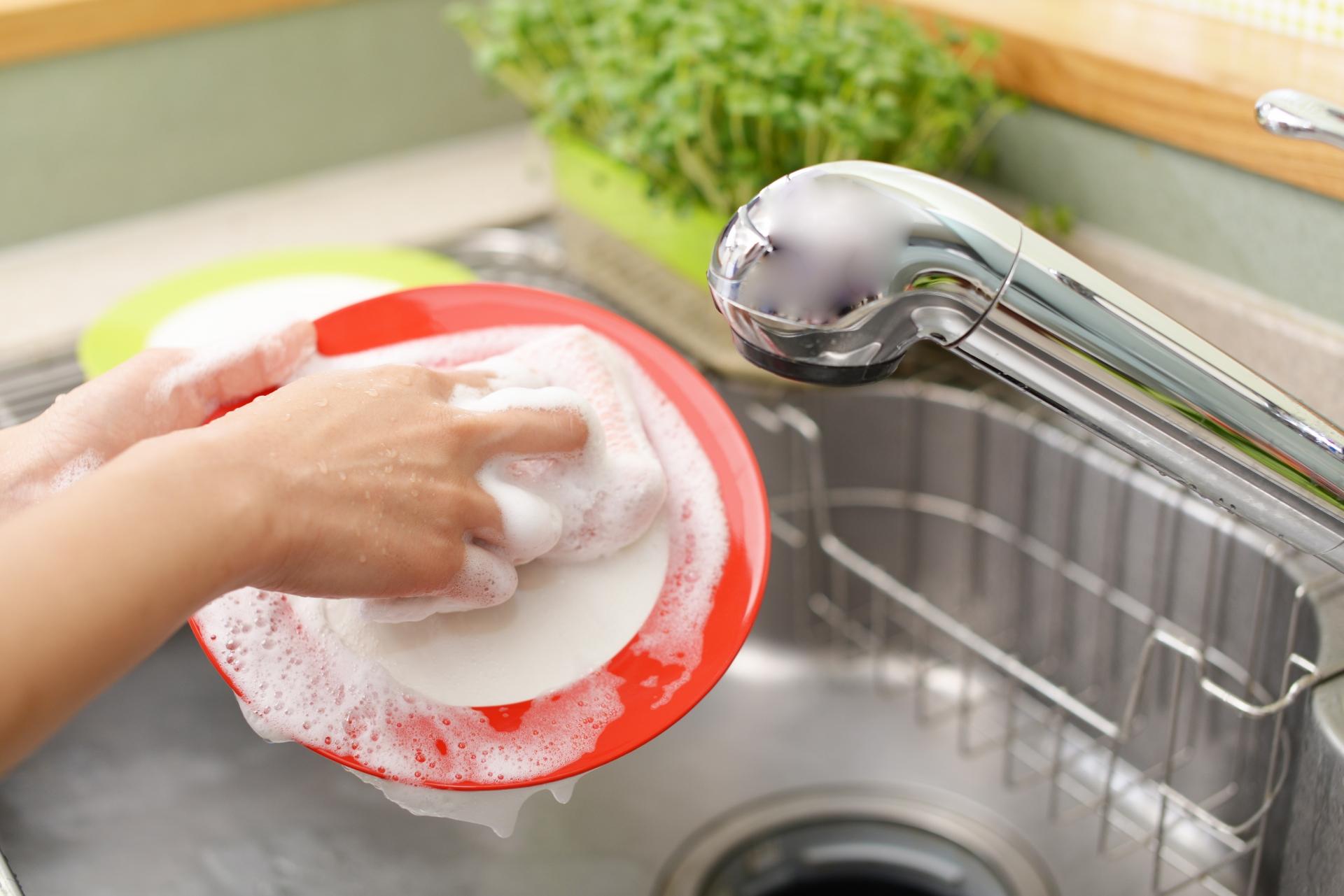 合成洗剤,ヤシの実洗剤,ヤシノミ洗剤